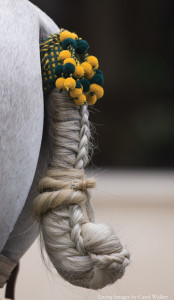 Tail braided for an exhibition in Spain