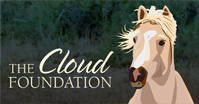 The-Cloud-Foundation