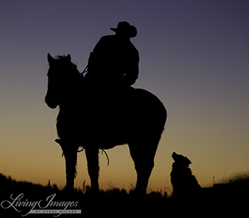 The Cowboy and His Dog