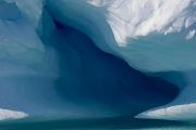Antarctica-118
