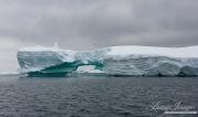 Antarctica-122