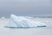 Antarctica-138