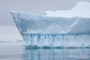 Antarctica-142