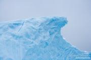 Antarctica-143