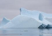 Antarctica-145