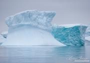 Antarctica-146