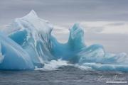 Antarctica-147