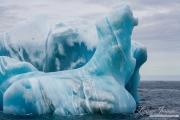Antarctica-148