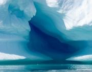 Antarctica-156