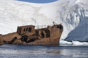 Wrecked Whaler, Paradise Cove, Antarctica