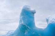 Antarctica-066