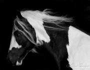 fineart-029-DarkGypsyRuns
